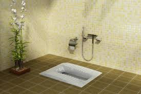 لوله بازکنی توالت ایرانی